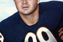 Chicago BEARS / by john martens