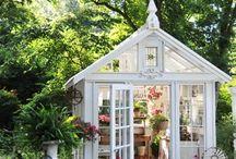 green houses / by Clara Sledd