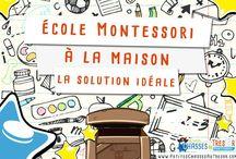 Théorie Montessori