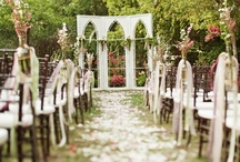 Wedding Ceremony / Decor and Ideas for your Wedding