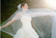 Veils / Every type of veil you can think of.