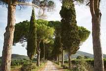 Explore Tuscany / Best photos for your sports in Italy's most adventurous region