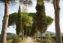 Toscane ❤️
