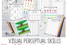 Visual perceptual