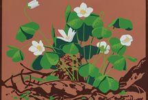 A.J. Casson Floral Veneers
