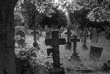 Cementerios / También en lo inerte hay belleza.