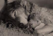 Piękne zdjęcia