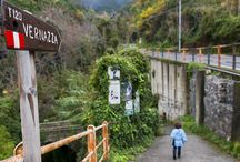 Liguria with Kids / Travel tips for visiting Cinque Terre, Genoa, and the Italian Riviera with kids