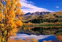 Autumn in Queenstown / Chillier but oh the colours! Autumn here is a beauty!