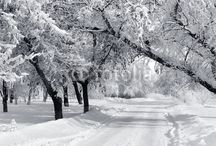 Winter is coming / by Fotolia
