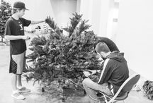 Behind the Scenes! / There's a lot that goes into making holiday decor magic!