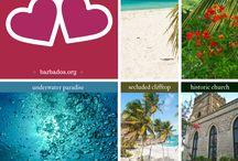 Weddings & Honeymoons - Barbados