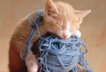 crochet ~ yarn love / by Kimberly K