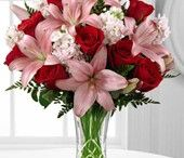 Roses at The Frugal Flower / The ultimate flower of elegance and grace, roses always send the right message. Supremely sentimental and always cherished, tell that special someone just how loved they truly are with a personalized bouquet of roses.