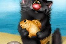 Cats_Gatos
