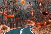 autumn ⭐