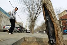 Shijiazhuang's street gallery