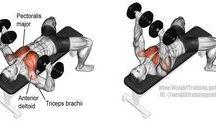 Mell edzés