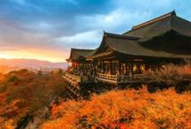 """East Asia Adventure / Experience the best from China, South Korea, and Japan in an unforgettable trip across the Far East! In China walk on the Great Wall or see a traditional acrobatic show. In Korea discover K-Pop and yummy Korean """"Seoul"""" food. In Japan explore beautiful bonsai gardens and Shinto shrines. Travel to East Asia with Bamba Experience today!"""