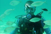 Búvárkodás - Víz alatti képek / Diving - Underwater Images / Búvárkodás képekben. Víz alatti képek Sarti és Görögország tengereiről. A szigetország szebbnél-szebb természeti látnivalókban gazdag ország, ahol szinte kivétel nélkül a tenger kapja a reflektorfényt. A víz alatti élővilág nem mindennapi élményeket kínál a búvárkodás résztvevőinek, hiszen akár könnyűbúvár felszereléssel is halrajokat, polipokat láthatunk. Az alábbiakban görög tengerek víz alatti képeiből válogattunk össze egy csokorra valót.