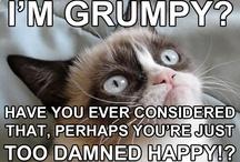 Grumpy Cat Rules