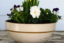 Gardening and Flower Arranging