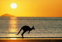Australia / The beautiful nature of australia!