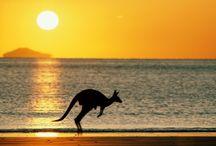 Australia / The beautiful nature of australia!