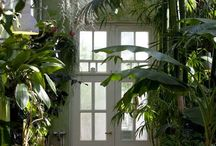 Tropical Interior Design / Interior for more tropical climates. British colonial, african, south american etc.
