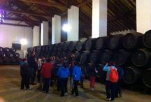 Visita Escolar Bodegas Salado / Recientemente hemos recibido una visita de escolares a las bodegas para conocer el proceso de producción de nuestros caldos.