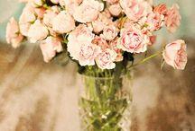 Deko & Blumen