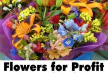Growing flowers for market