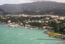 Wellington / wellington