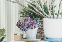 florals / We love fresh, abundant floral + produce displays at The Boathouse. Floral + produce displays on tables around the space at The Boathouse Shelly Beach are included in all wedding + event packages. www.theboathousesb.com.au
