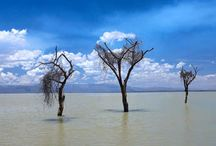 Africa / Stunning images from Africa - many available for printing on our blinds.