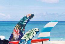 Longboard, surf e skate