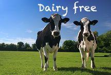 Gluten free and dairy free diet / Diet tips