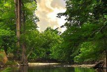landscape N nature