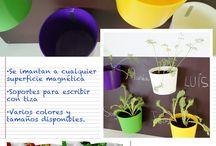 Huerto escolar / Productos para aficionar a los más pequeños en la jardinería y horticultura