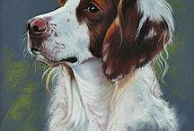 Dogs & Art