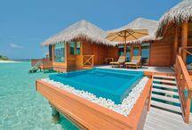 Vacation: Beach Rentals / Someday!