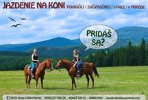 North Orava Cutting Horses / Horses,Riding,Cutting,Nature,Rural Tourism,Orava,Slovakia