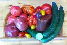Gimel Organic Kitchen