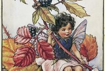 CMB - Flower Fairies of the Autumn