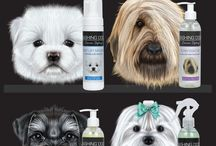 New Dog Grooming Arrivals