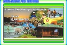 "Rumah Tani Nelayan Indonesia / ""Rumah Tani Nelayan Indonesia adalah Wahana Komunitas Jejaring Sosial diperuntukan bagi petani dan nelayan indonesia dalam rangka mempererat tali silturahmi dan komunikasi untuk terhubung satu sama lain demi tercapainya cita-cita bangsa indonesia sejahtera adil makmur nan sentosa."""