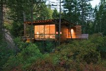 Tree house architecture ideas