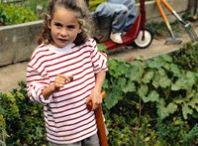 Gardening / Tips and tricks for the home gardener