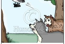Animal Cartoons / Cartoons about wildlife, dogs, cats, animals in zoos and aquariums, and other pets