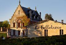 Château la Gaffeliere / visite du vignoble et des chais au Château la Gaffeliere à Saint Emilion Bordeaux Réservez avec winetourbooking.com